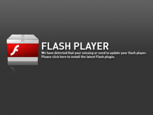 Samsung Adobe Flash Player